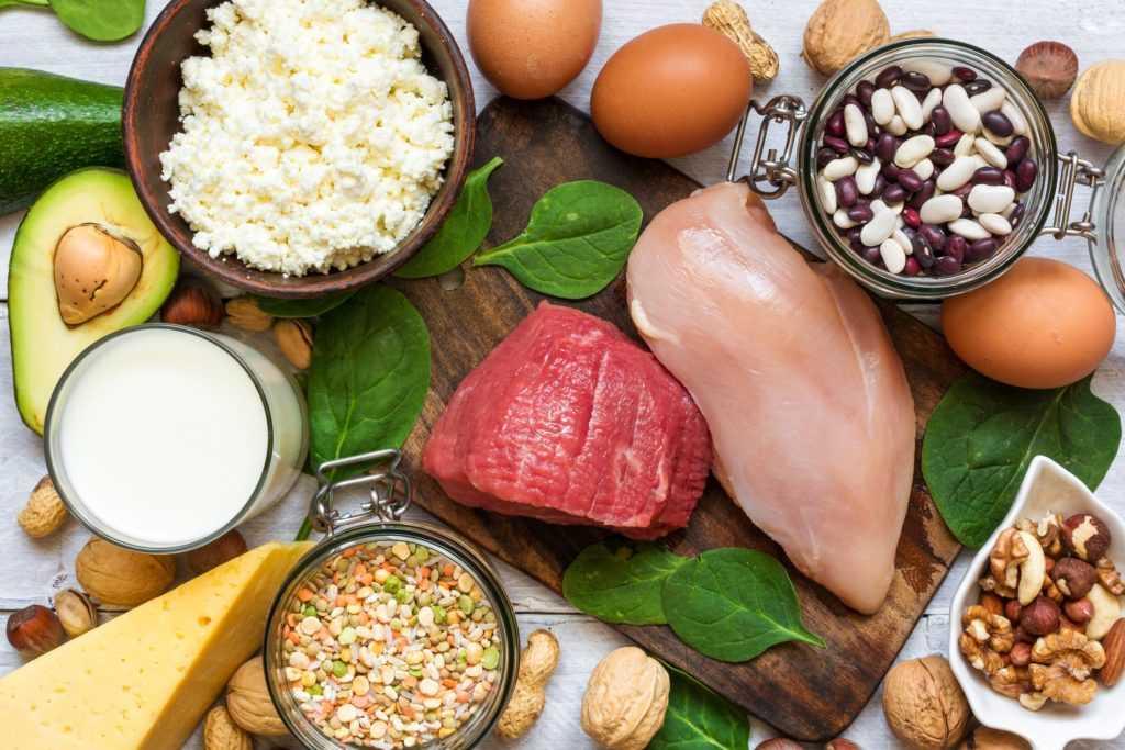 günlük protein miktarı
