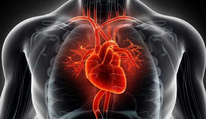 sporcularda kalp buyumesi