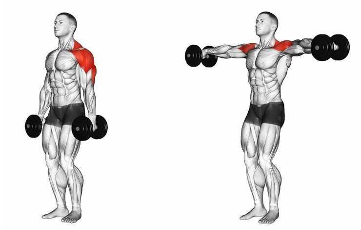lateral raise yana açış hareketi