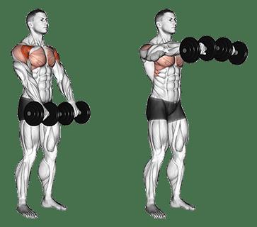 front raise omuz hareketi