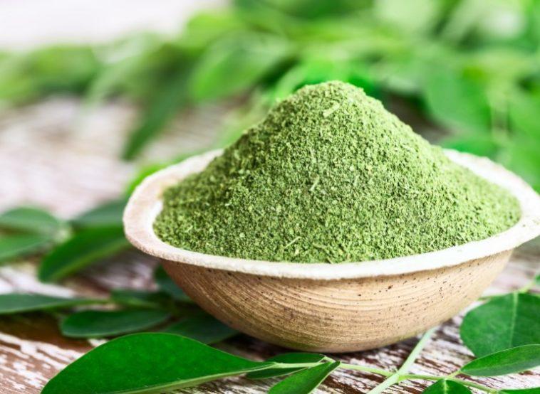 moringa çayı faydaları