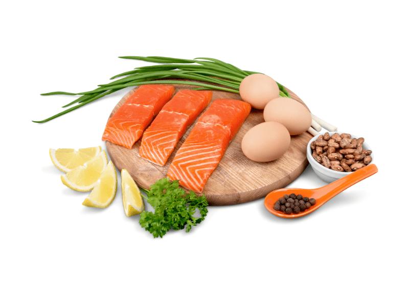 proteini yüksek gıdalar