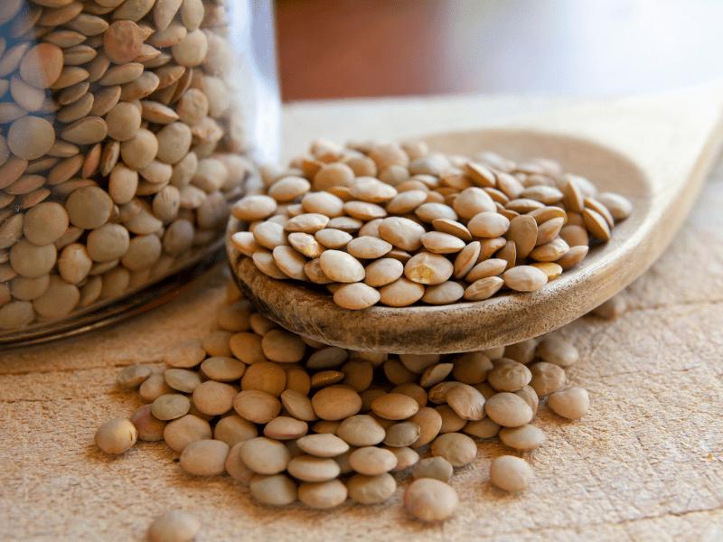 mercimek vegan protein