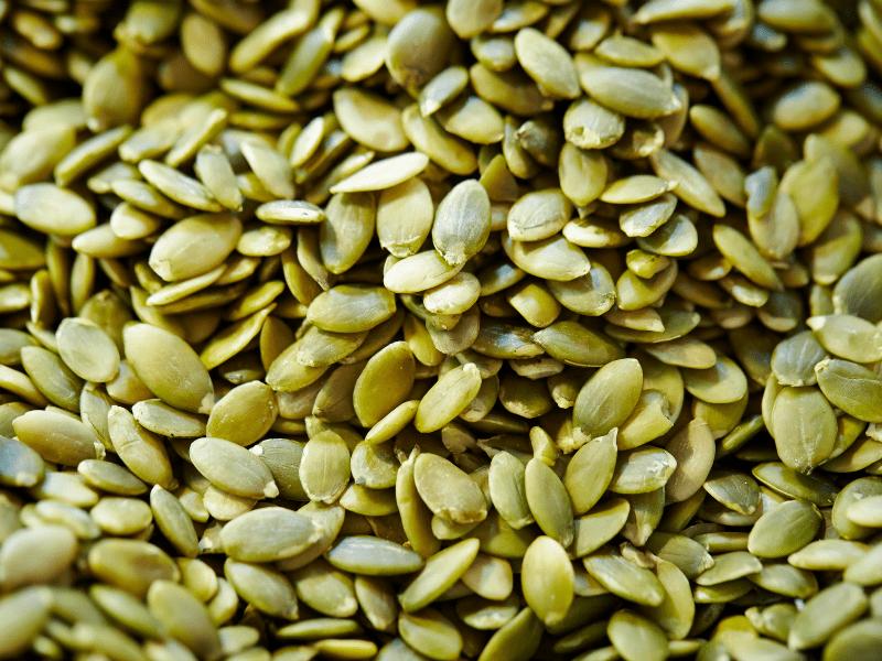 kabak çekirdeği protein