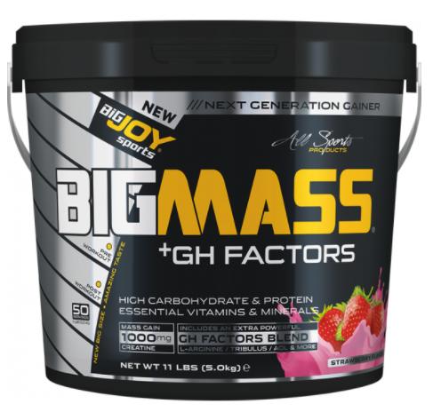 bigmass factors
